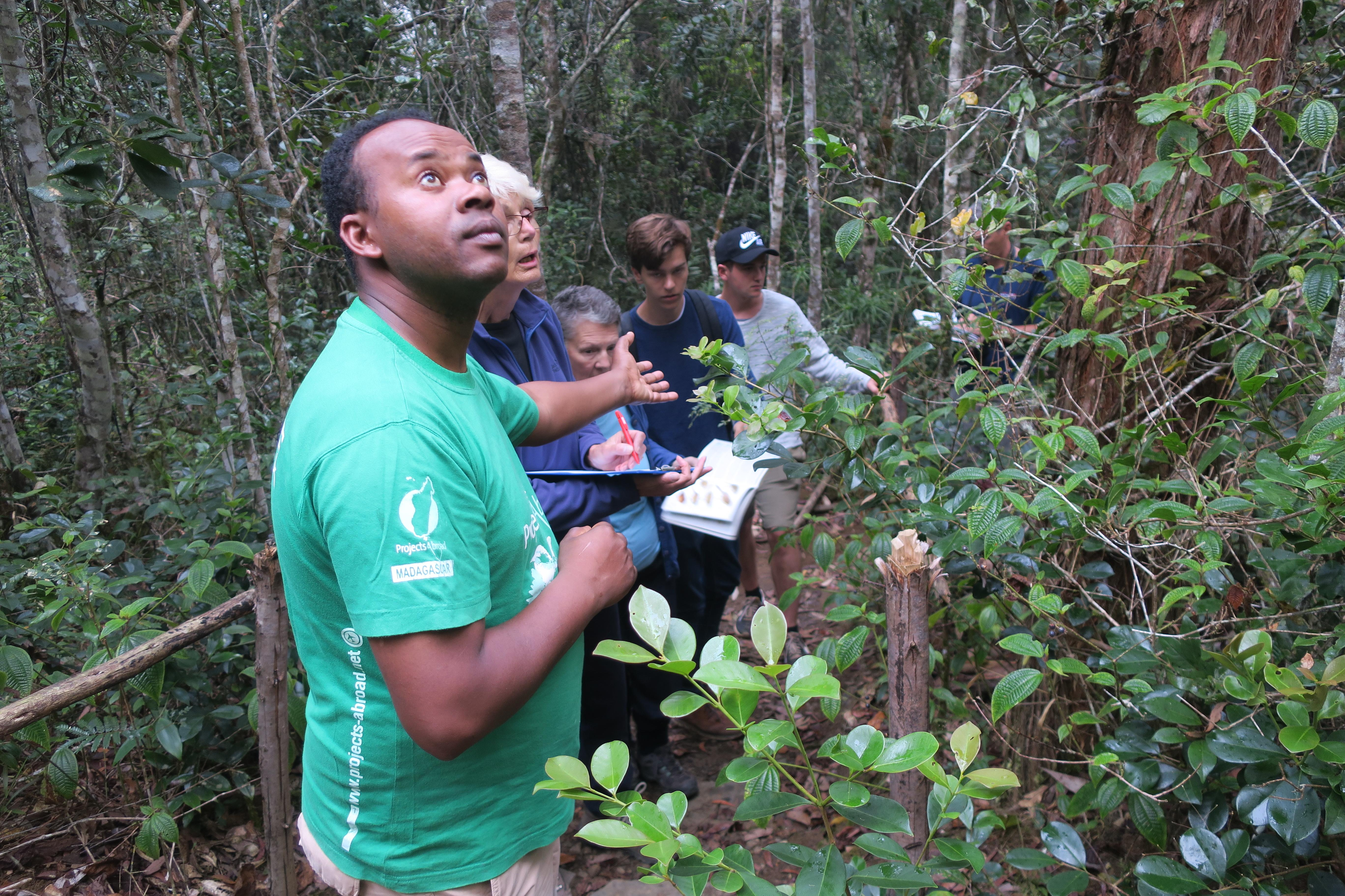 An intern is seen conducting a bird survey whilst on his rainforest conservation volunteering in madagascar with Projects Abroad.
